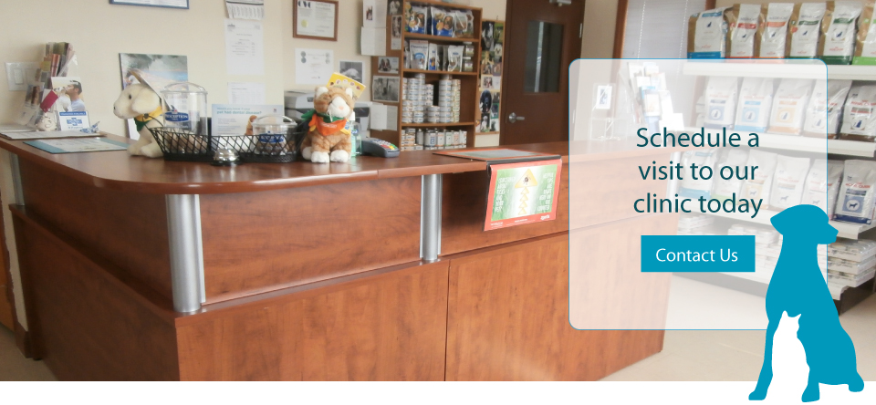 Schedule a visit to our clinic today | Contact us | Pickering Village Pet Hospital Front Desk